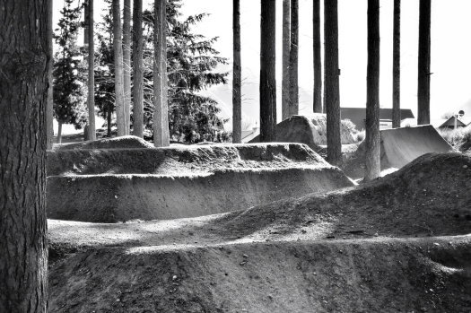 You should see the smile on my face watching these trails. I'd kill for bmx.
